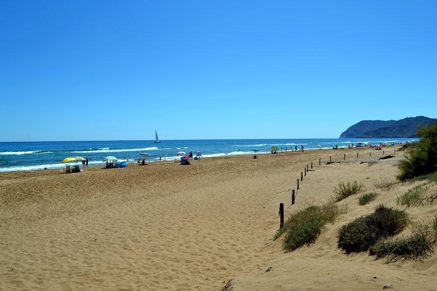 real-beach.jpg